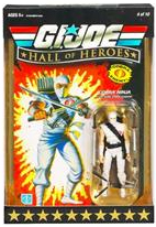 Hall Of Heroes - Storm Shadow