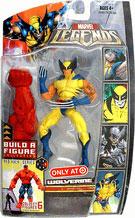 Hasbro - Wolverine Tiger Stripe