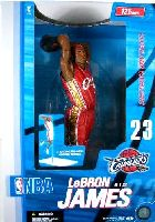 Lebron James 12 inch