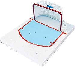 Hockey Goalie Net Modern