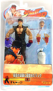 Japanese Version - Evil Ryu Variant