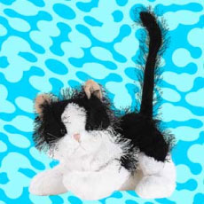 Webkinz Black and White Cat