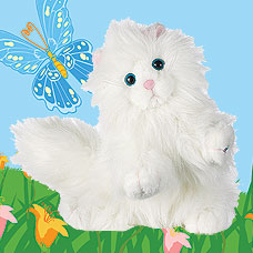 Webkinz Persian Cat