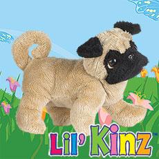 LilKinz - Pug