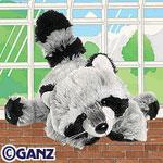 Webkinz - Racoon
